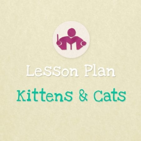Kittens & Cats lesson Plan
