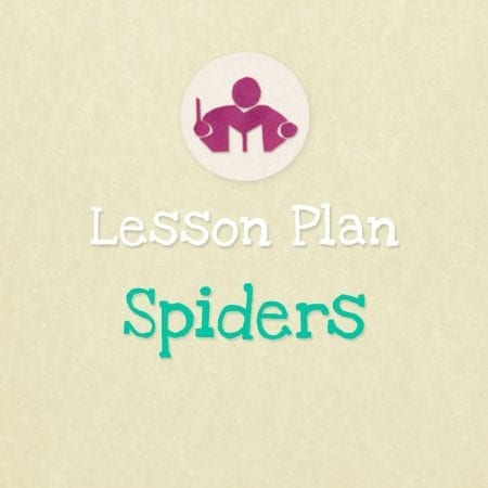 Spiders Lesson & Activity Plan